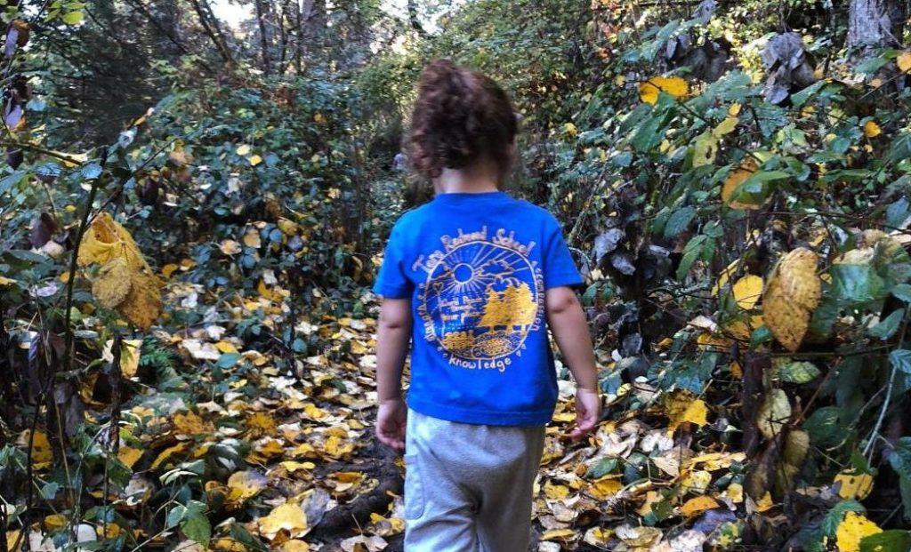 School Outdoor Program at Tara Redwood School in Soquel,Santa Cruz