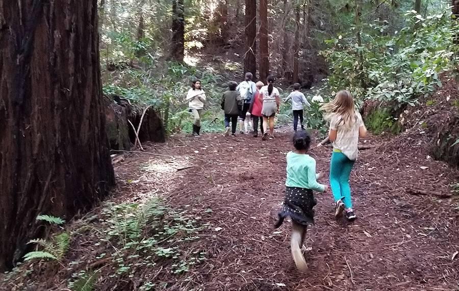 best summer camp and school in santa cruz