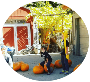 Santa Cruz Schools private,elemetary and preschool