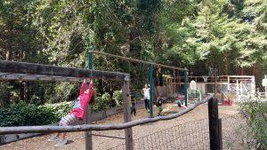 Best private school in Santa Cruz