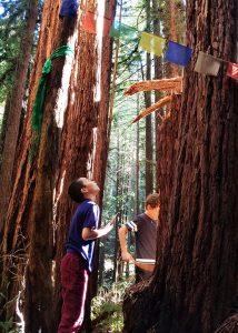 Santa Cruz private school forest school