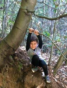 Forest school santa cruz
